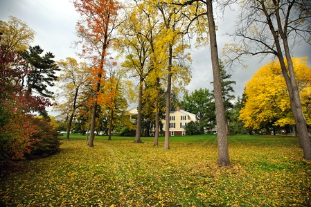 Just in time for Fallcoming Weekend, campus bursts into fall color. (PHOTO BY NANCY L. FORD)